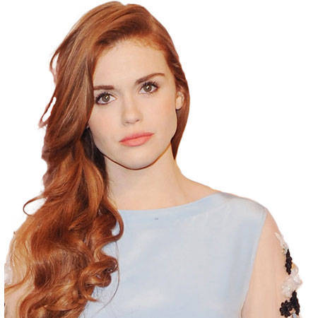holland roden bio fact affairrelationshipcareernet