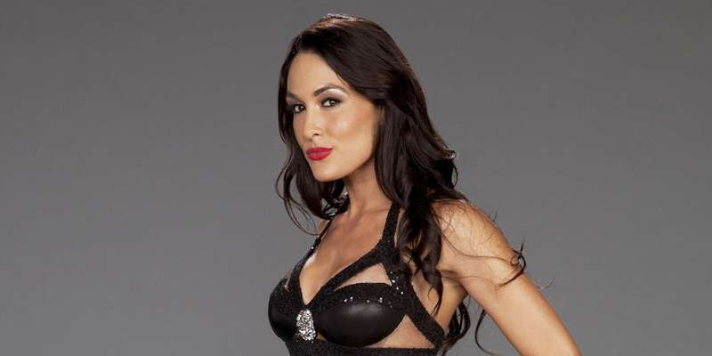 WWE stars Brie Bella and Nikki get their own reality show, The Total Bellas