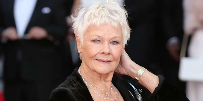 Interesting story: Judi Dench to star along with daughter Finty Williams in The Vote