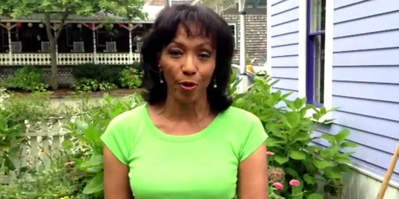 NBC's Rehema Ellis thought to be divorced with her husband as she lives alone with her son