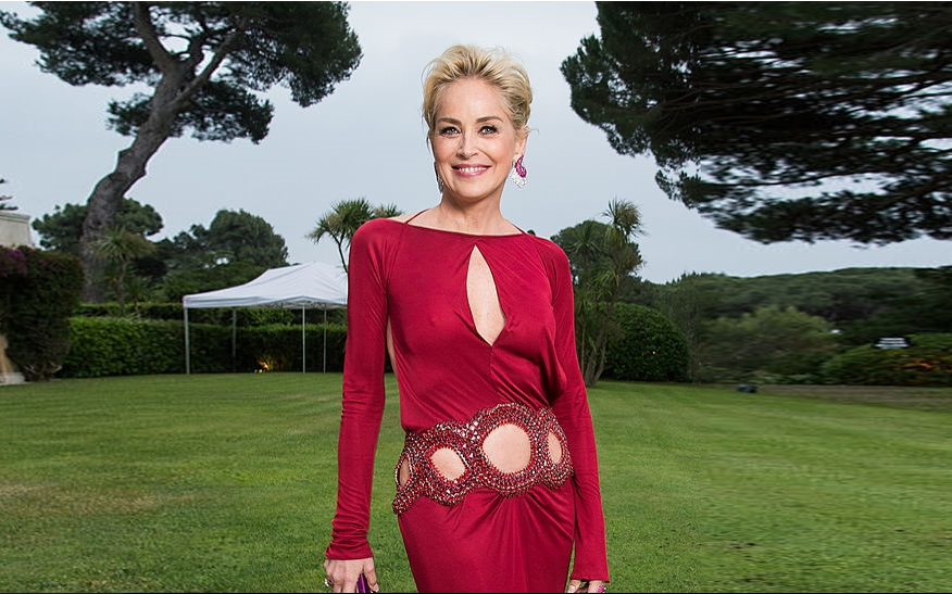 Sharon Stone's Unsuccessful Marriages: Her Current Relationship Status, Who Is She Dating?
