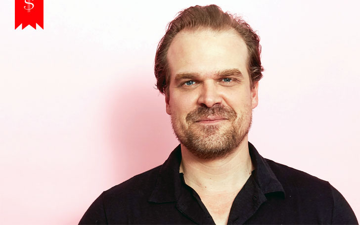 How Much Is David Harbour's Net Worth? Details on His Salary, Career and Awards