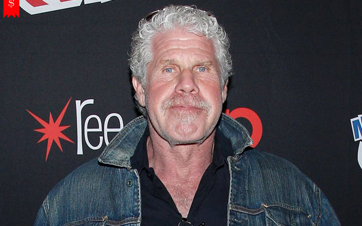 Hollywood Star Ron Perlman's Earning From His Profession and Net Worth: Find Out About His Career