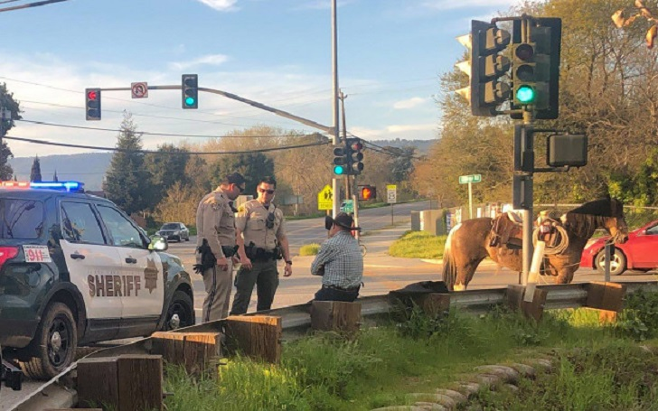 Man Arrested for Riding Horse While Drunk in Santa Cruz, California