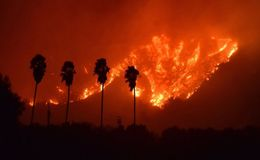 Destructive Wildfire in Southern California Forces Over 1,000 Homes to Evacuate and 1 Dead
