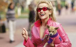 MGM in Negotiations to Bring Reese Witherspoon in Legally Blonde 3
